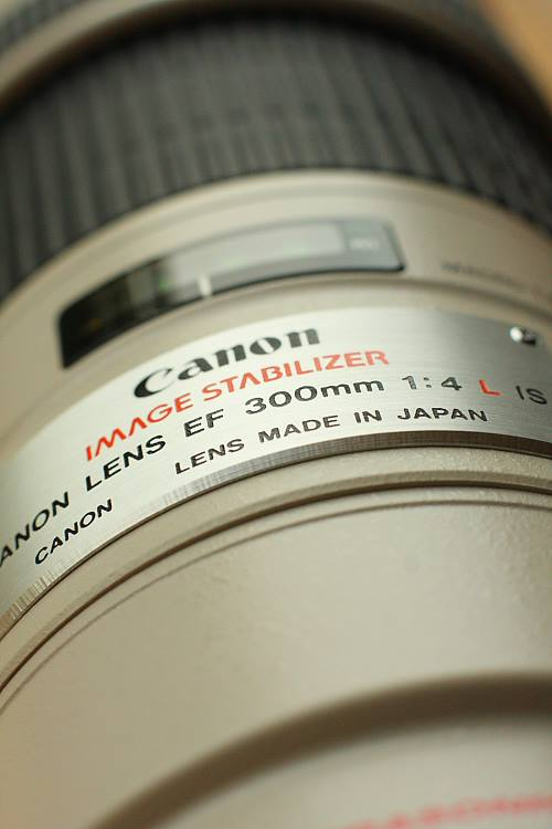 Canon 300mm f/4L New Toy