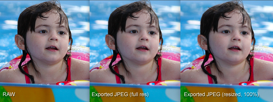CLICK TO ENLARGE: A screenshot composite of three images in Digital Photo Professional, submitted to illustrate a problem I perceieve in the program's JPEG export process.  The differences are subtle (depending on the dot pitch of your monitor), but are visible at the top of her hair, her eyes, mouth, and a few other details.